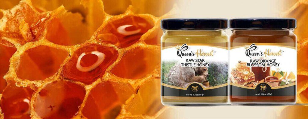 Raw Honey Star Thistle and Orange Blossom