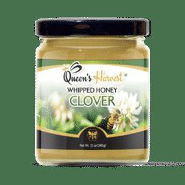 Gourmet Clover Whipped Honey