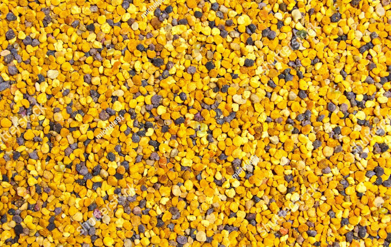 Nutritious Raw Bee Pollen Benefits